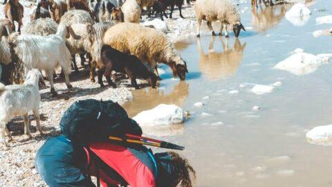 כל המסע על שביל ישראל